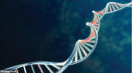 Biotech Investors Should Consider The Four Horsemen